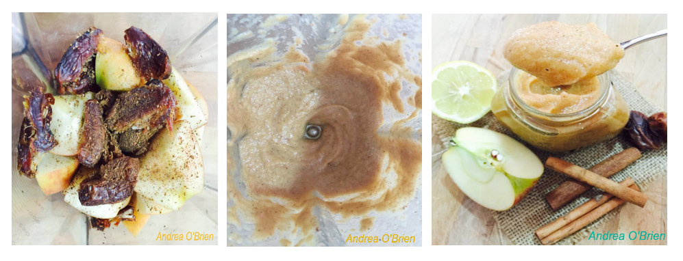 Raw applesauce blender lady blog raw applesauce is a quick easy delicious and healthy vitamix recipe kids love it toddlers love it mothers dads and grandparents love it forumfinder Choice Image
